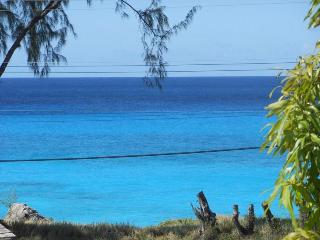 3 bed house 1 minute to beach, stunning ocean view - Speightstown vacation rentals