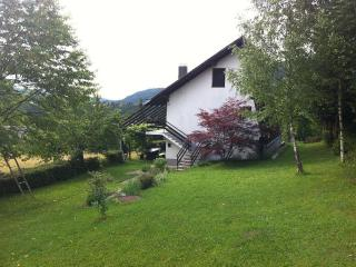 Chalet in green heart of Croatia - Primorje-Gorski Kotar vacation rentals