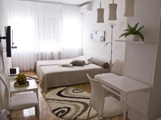 Oaza Apartment, Djure Danicica St., Center - Belgrade vacation rentals