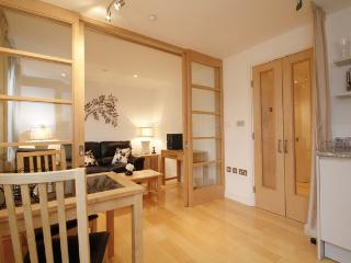 Luxury 1 Bedroom Apartment in Oxford City Center - Oxford vacation rentals
