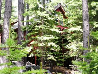 Delectably Delaware -a secluded chalet with spa! - South Lake Tahoe vacation rentals