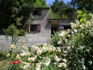 Le Mazet - Tarn vacation rentals