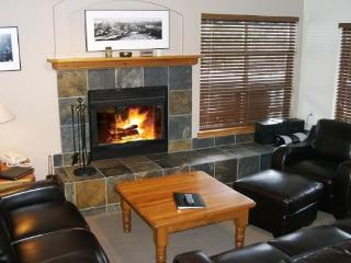 Forest Trails - Large 3 bedroom + den, easy access to skiing, private garage - Whistler vacation rentals
