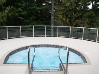 Painted Cliff - Spacious ski in ski out property located on Blackcomb - Whistler vacation rentals