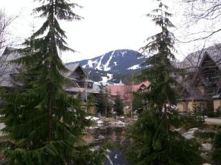 Stoney Creek Lagoons 2 bedroom - Conveniently located, free parking & wifi - Whistler vacation rentals