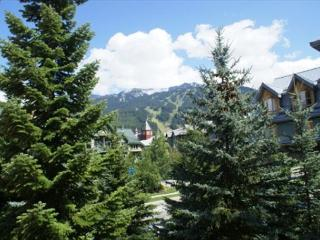 Deluxe 3 bedroom with Village location and private hot tub - Whistler vacation rentals