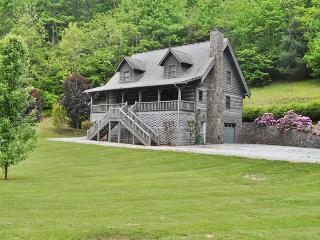 Carolina Cabin - Sylva vacation rentals