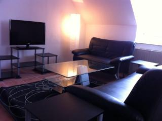 Kaiserslautern center apartment - Kaiserslautern vacation rentals