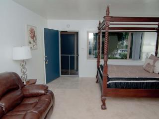 -60 Yards to Beach in Pacific Beach- June $694/wk - San Diego vacation rentals