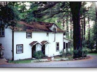 Carriage House - Lake Luzerne vacation rentals