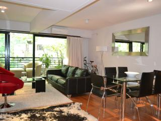 Great Condo @ Palermo - 1BR 1.5 Bt - Ac /Lcd/ Maid - Buenos Aires vacation rentals