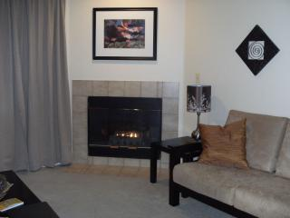 Affordable w/ Pool and Open Space overlooking lake - Boulder vacation rentals