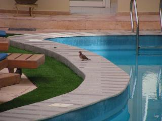 106155 Two bedrooms, Paradise Hills Hotel Apartments, Hurghada - Egypt vacation rentals