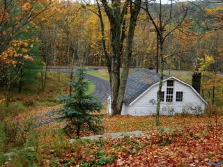 Perfect Country Getaway (Woodstock) - Woodstock vacation rentals