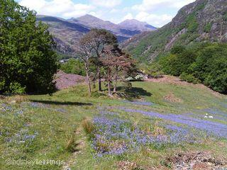Snowdon in the background as Beddgelert nestles in the valley - Hebog House - Beddgelert - Beddgelert - rentals
