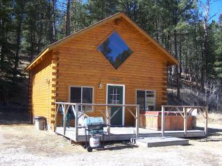 Roosevelt Cabin - Hill City vacation rentals