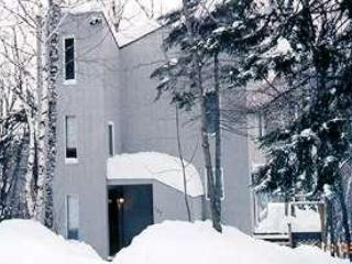 Property With Typical Snowfall - Sleeps 12 & Big Fireplace - Fayston - rentals