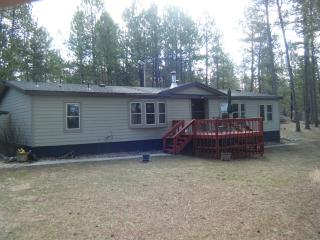 Dakota Pines Hideaway - Black Hills and Badlands vacation rentals