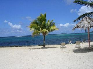 St. Croix Mill Harbor Condo in Christiansted - Christiansted vacation rentals