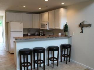 Brand New Sapcious Condo On the Water! - Camdenton vacation rentals