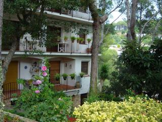Lovely apartment in a small cove - Tamariu vacation rentals