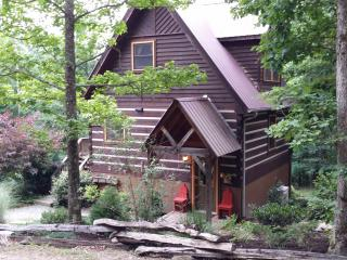 Paint Rock Cabin - Hot Springs vacation rentals