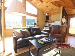 Woodland Loft #3 - Bryson City vacation rentals