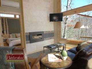Woodland Loft ALL 3 - Bryson City vacation rentals