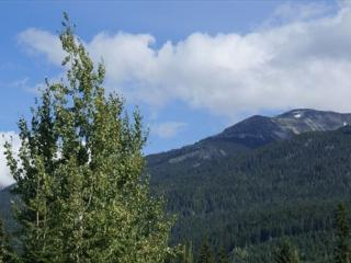 Glaciers Reach condo on the free shuttle route and includes free wi fi! - Whistler vacation rentals