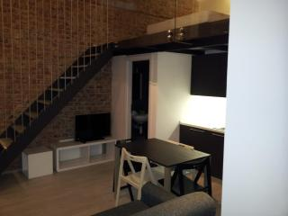 Two Bedroom Flat in center Prague - Prague vacation rentals