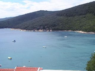 Nice apartment, 100 m from the sea 93 - Rabac vacation rentals