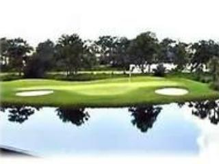 Bonita Bay/Estero Golf/Boating Resort, 2/2 condo - Estero vacation rentals