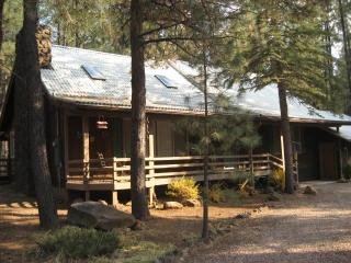 Cabin by the Lake - Pinetop vacation rentals