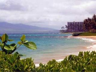 Oceanfront Maui Condo..Steps to the Beach! - Princeville vacation rentals