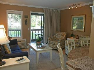 Ocean Dunes Villa 103 - Deluxe 1 Bedroom 1 Bathroom Oceanview Condo - Hilton Head vacation rentals