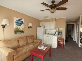 Seaside Villa 273 - 1 Bedroom 1 Bathroom Oceanside Flat  Hilton Head, SC - Hilton Head vacation rentals