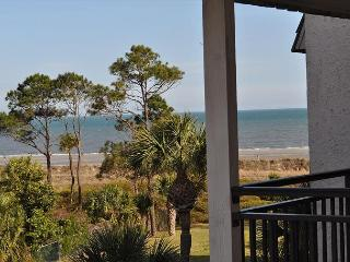 Beautiful 1 bedroom Deluxe Oceanview Seaside Villa 313 - Hilton Head vacation rentals