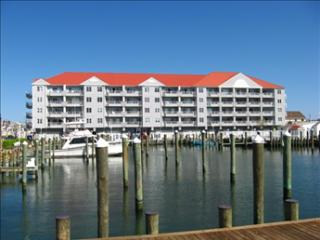 White Marlin 308B 98998 - Ocean City Area vacation rentals