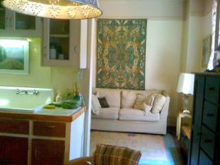 A  Perfect  X'mas  in  a Charming  Apartment - Montreal vacation rentals