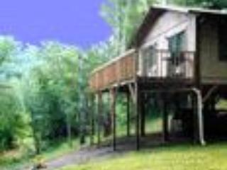 North Carolina Mountain Retreat - Image 1 - Burnsville - rentals