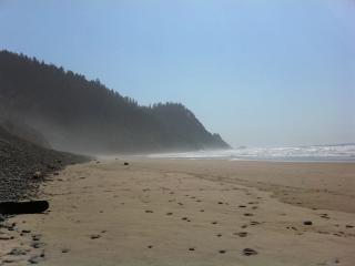 Cove Beach House - Sisters vacation rentals