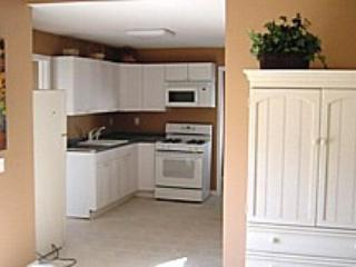 Lazy River in the Park Home and Guest Cottage - Seaside Heights vacation rentals