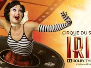 Cirque du Soleil is within WALKING DISTANCE! - Bed and Bay Residence Inn