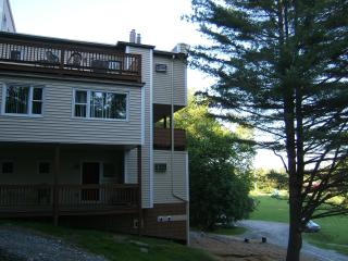Cozy Condo - Great for Couple or Small Family - Stowe vacation rentals