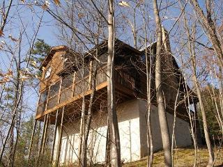 Cabin in between Gatlinburg and Pigeon Forge TOP OF THE WORLD 201 - Sevierville vacation rentals
