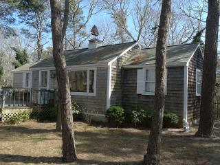 Contemporary Oceanside Cottage  - Eastham - Brewster vacation rentals