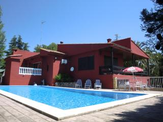 Spacious villa with gardens, pool and games room - Valencia Province vacation rentals