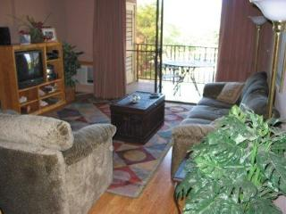 Stunning 2BR 2Bath, Accomodates 6 People -KS10402 - Kihei vacation rentals
