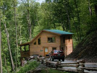 Hidden Falls Cabin - Topton vacation rentals