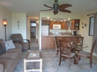 1BR Condo, Newly Remodeled -LKD101 - Kihei vacation rentals